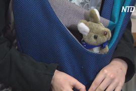 Польки шиють сумки для кенгуренят, осиротілих після пожеж в Австралії