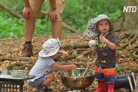 Австралійських малюків дедалі частіше віддають до лісових дитсадків