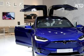 У США й Канаді відкликають 15 000 кросоверів Tesla Model X