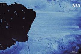В Антарктиді від льодовика відколовся айсберг завбільшки як Запоріжжя