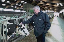 Французькі фермери бояться зменшення субсидій після «брекзиту»