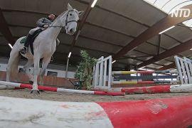 Перед карнавалом у Кельні коней перевіряють на стресостійкість