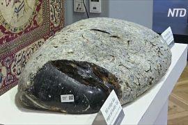 У Данії на аукціоні продали величезний копал вагою 38,5 кг