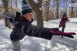 Йога та снігоступи: американці прямують до лісу, щоб зняти стрес