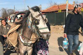 Турецькі цигани заробляють на мігрантах, які оселилися біля кордону з Грецією