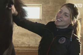 Доброта в умовах карантину: жителі Риги допомагають цирку