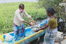 Індійський човняр возить їжу на острови, які відрізані від світу через карантин