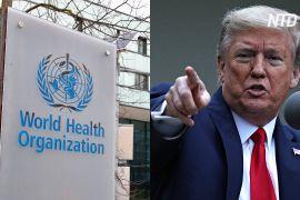 США не фінансуватимуть ВООЗ: Дональд Трамп вимагає розслідування