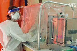 Препарат ремдесивір ефективно усуває симптоми коронавірусу в макак-резусів