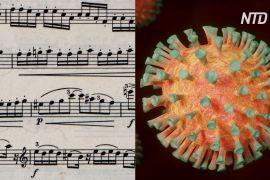 Як музика допоможе протистояти новому коронавірусу