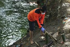 Індонезієць живе в самоізоляції в лісі й очищує річку