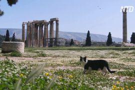 Греки сидять на карантині, а весна вступає у свої права