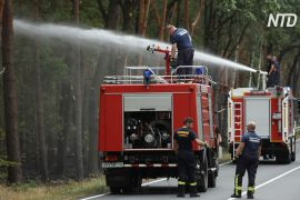 Нема дощів: у Німеччині почалися лісові пожежі