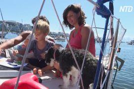 Аргентинська сім'я самоізолювалася на яхті біля берегів Бразилії
