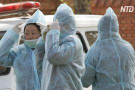 ВООЗ стежить за спалахом бубонної чуми у Внутрішній Монголії