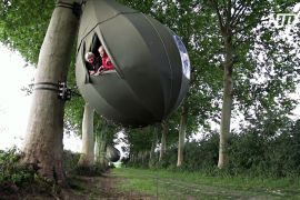 Сон на дереві: у Бельгії стає дедалі популярнішим відпочинок у коконах