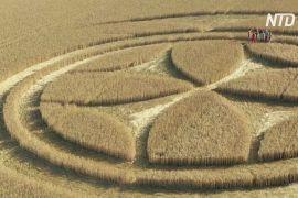 Великі кола й хрест тамплієрів: на полі у Франції з'явився гігантський візерунок