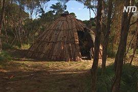Традиційні житла аборигенів зводять на острові Тасманія