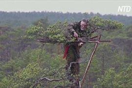 Рукотворні гнізда для птахів: як білоруський орнітолог допомагає пернатим