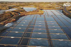 Через небувалу спеку видобування знаменитої герандської солі у Франції зростає