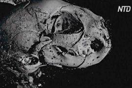 Учені розкривають загадки мумій завдяки 3D-технологіям