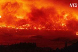 Небувалі лісові пожежі охопили все Західне узбережжя США