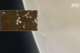 На Венері знайшли газ, який вказує на можливу наявність позаземного життя