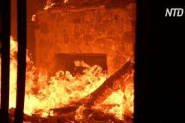 В Аргентині лісові пожежі загрожують житловим будинкам
