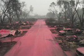 Лісові пожежі в США: 35 загиблих