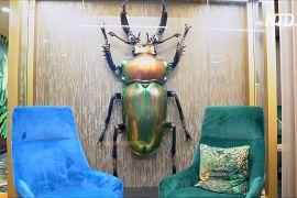 Повітряні кулі й гігантські жуки: як людей заманюють назад до офісів
