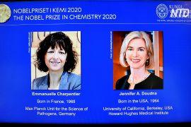 Нобелівську премію з хімії присудили за відкриття «генетичних ножиць»