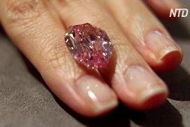 За діамант «Привид троянди» очікують одержати до 38 мільйонів доларів США
