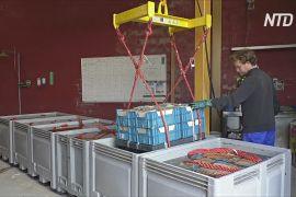 Дизайнерські меблі й будматеріали в Бельгії роблять зі сміття