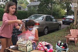 Пошта фей під деревом: письменниця створила казку для дітей, які нудьгують на карантині
