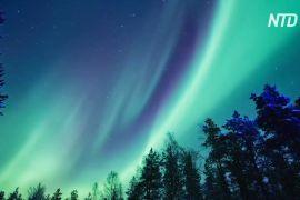 Красиве північне сяйво зняли на відео у фінській Лапландії