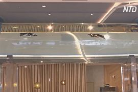 Пінгвіни в тунелі й лампи-медузи: на Тайвані працює готель-акваріум