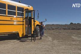 Шкільні автобуси в США розвозять завдання для індіанських дітей