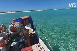 Волонтери 8 місяців пробули на безлюдному острові й не знали, що почалася пандемія