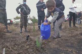 В Алжирі після лісових пожеж масово садять дерева