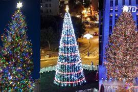 Різдвяні ялинки від Нью-Йорка до Ватикану