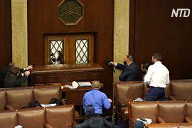 Стрілянина в Конгресі й протести: у США визначають вибірників від штатів