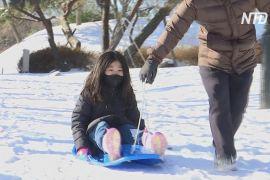 Через снігопад і закриті зимові курорти південнокорейці розкупили всі санки