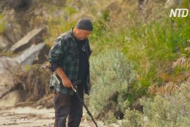 Тасманійський шукач скарбів допомагає людям знайти втрачені цінності