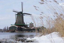 Сніг, сонце й млини: нідерландці радіють погоді й виходять гуляти