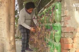 Індієць заснував першу у світі безплатну лікарню для дерев