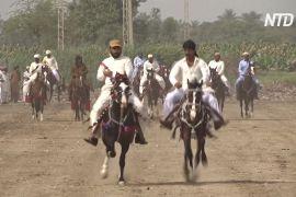 Боротьба й кінські перегони: традиційний фестиваль у Пакистані