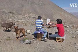 Школярі в Чилі щодня ходять на гору, щоб відвідувати онлайн-уроки