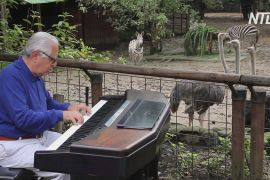 Для мешканців колумбійського зоопарку провели концерт класичної музики