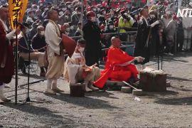 Японські ченці босоніж походили по розпеченому вугіллю й помолилися про здоров'я людей