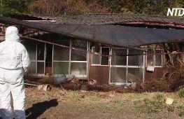 Через 10 років після аварії на АЕС у жителів Фукусіми немає надії повернутися додому